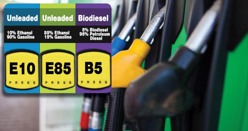 BiofuelMandatePaper-MainImage